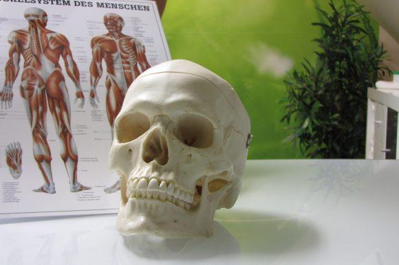 Cranio-Sacrale-Therapie (CS)